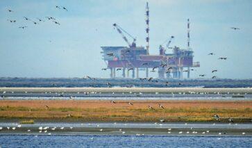 Decomissioning platforms onshore, AYOP | DGMR