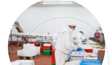 Sprinkler challenges in the Food Industry